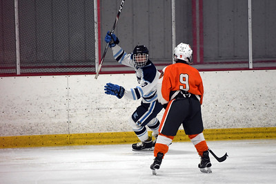 hockey_3450