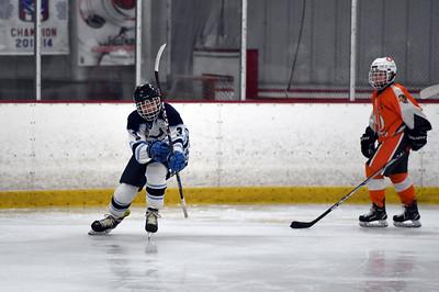 hockey_3453