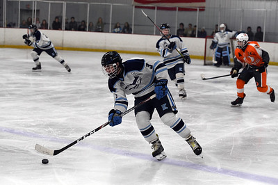 hockey_3401