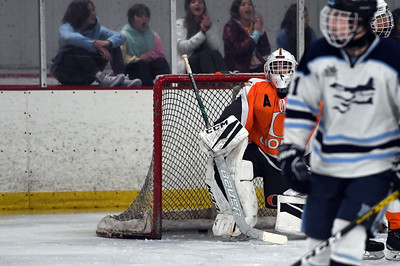 hockey_3454