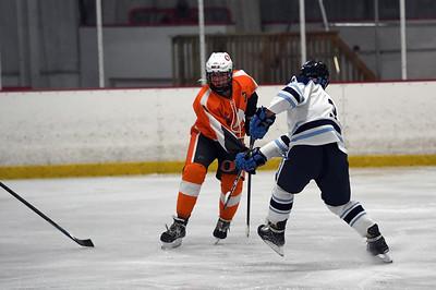 hockey_3376