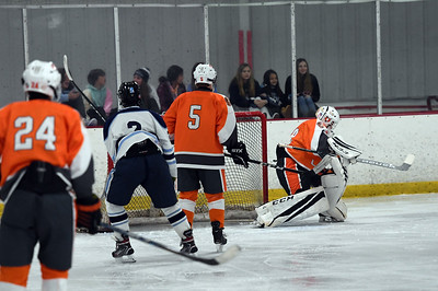 hockey_3379