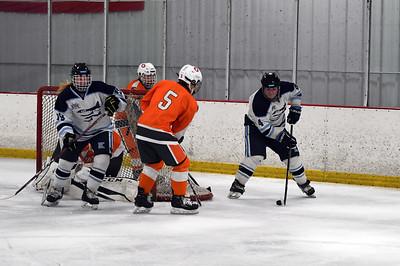 hockey_4409