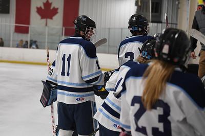 hockey_4313