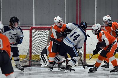 hockey_5399