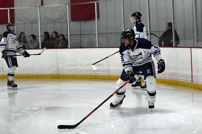 hockey_2912