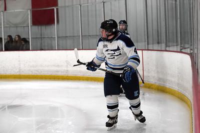 hockey_2939