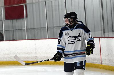 hockey_2866