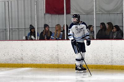 hockey_2901