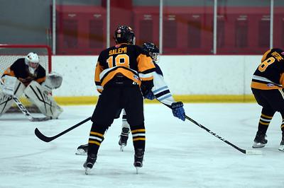 hockey_3452
