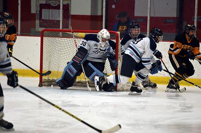 hockey_3308