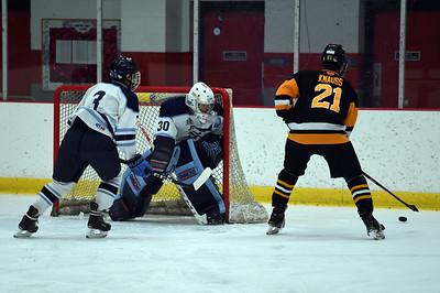 hockey_3318