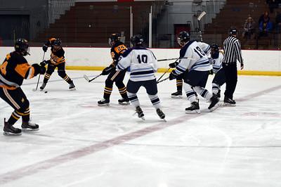 hockey_3396