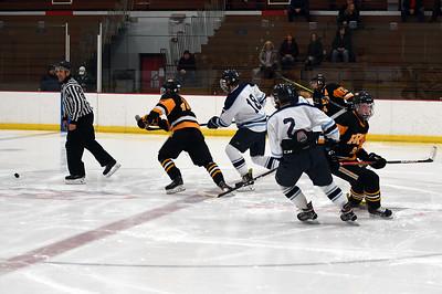 hockey_3290