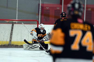 hockey_3457
