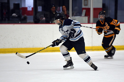 hockey_4495
