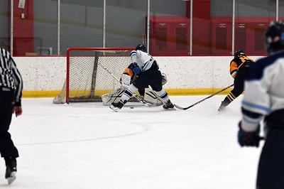 hockey_4438