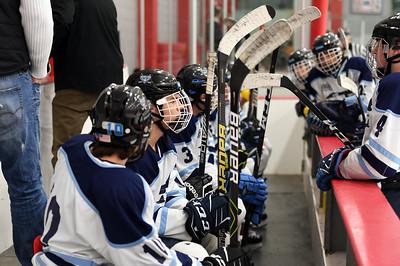 hockey_4376
