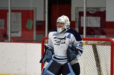 hockey_3201