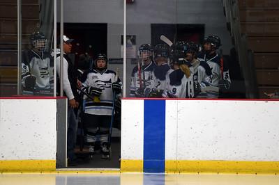 hockey_3160