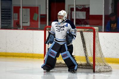 hockey_3200