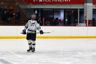 hockey_3278