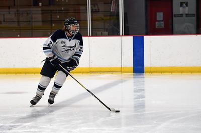 hockey_3228