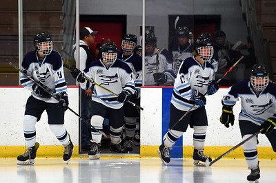 hockey_3166