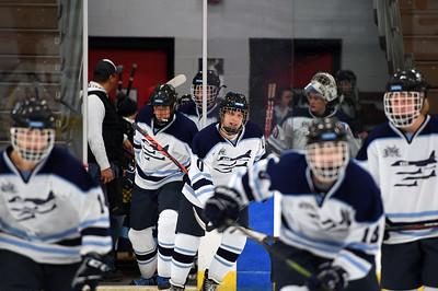 hockey_3171