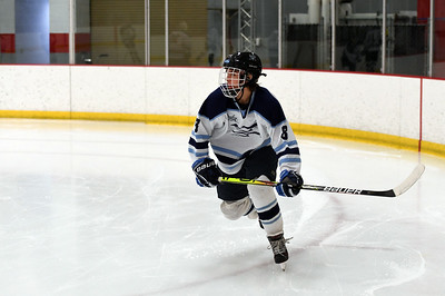 hockey_3224
