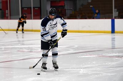 hockey_3239