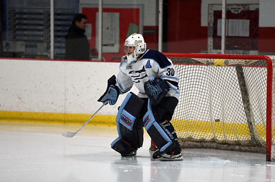 hockey_3207
