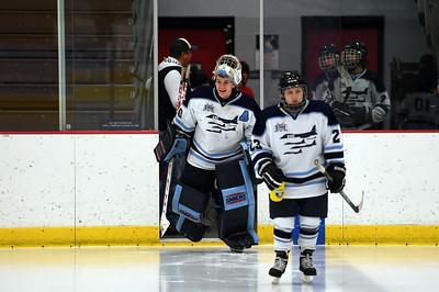 hockey_3180