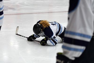 hockey_3253