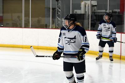 hockey_3219