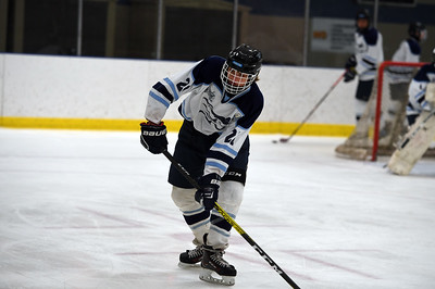 hockey_4571
