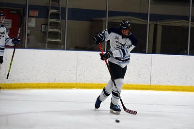 hockey_4574