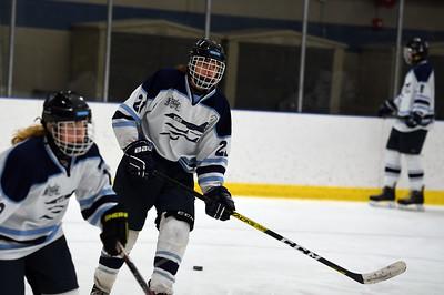 hockey_4582