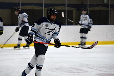 hockey_4561