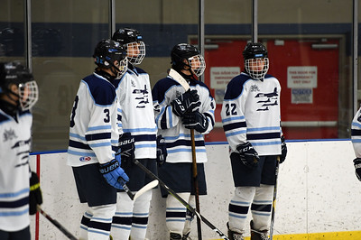 hockey_4542