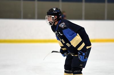 hockey_3800