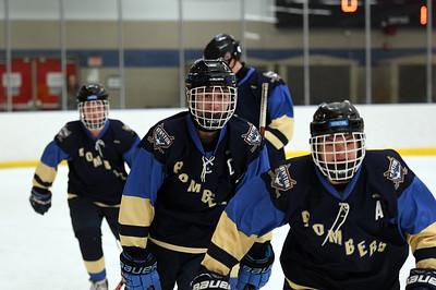 hockey_3890