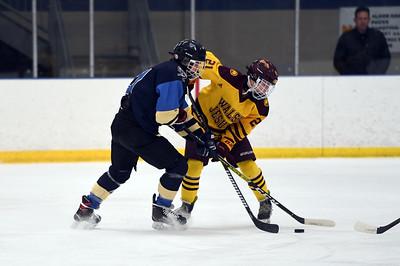 hockey_3829