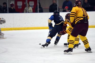 hockey_3860