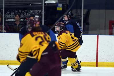 hockey_3921