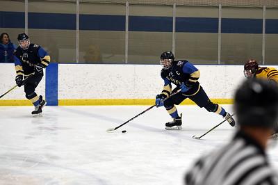 hockey_3820