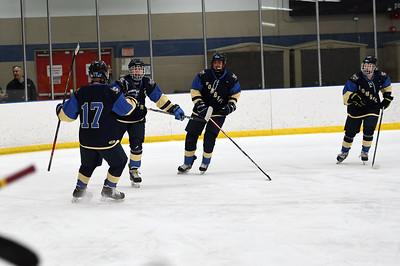 hockey_3876