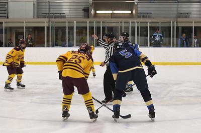 hockey_3805