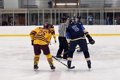 hockey_3802