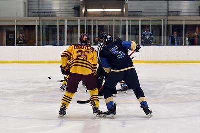 hockey_3809